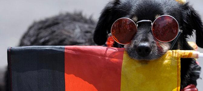 Viaggio a Berlino con il tuo cane