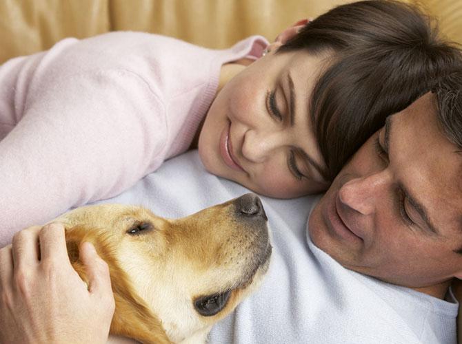 Quando un cane ci ama…