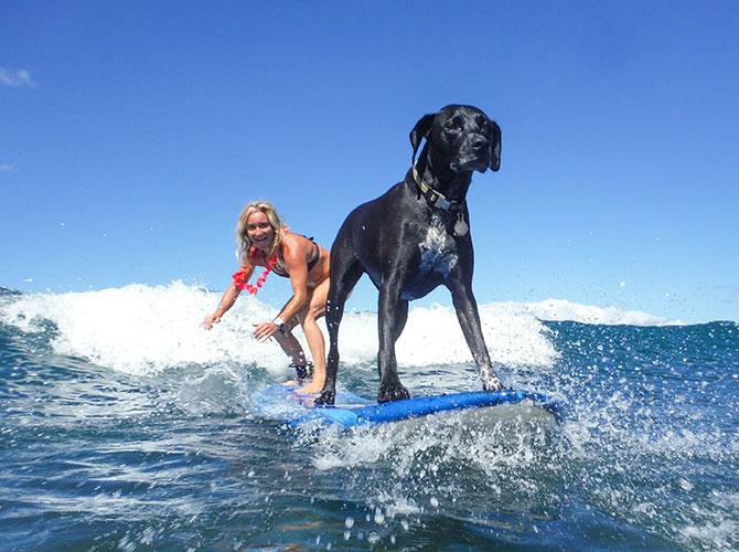 Surf, che passione!