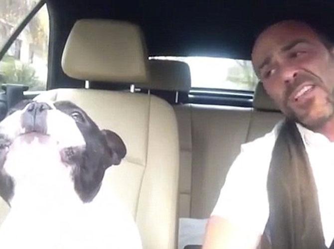 Duetto al volante