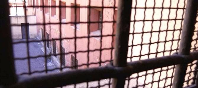 Cani e detenuti… Fuori dalle gabbie