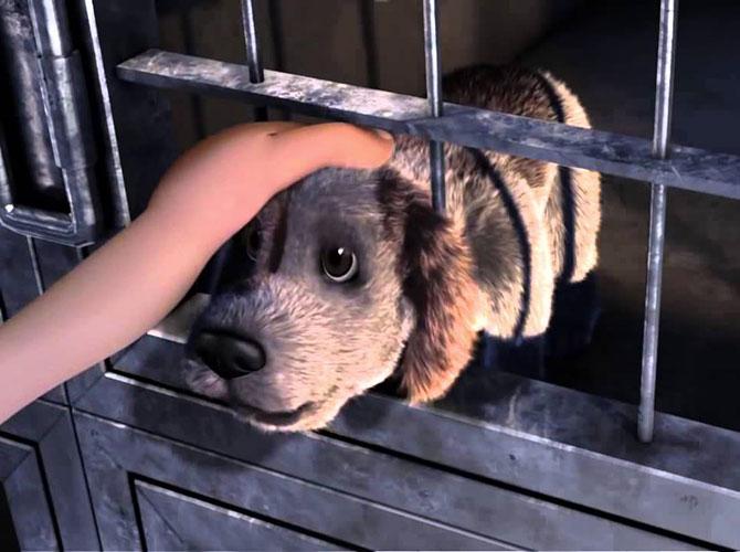 """""""Portami a casa"""": amore e adozione"""