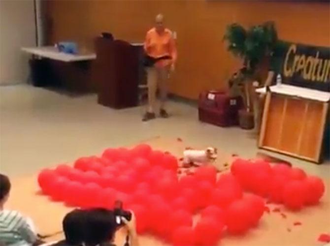 Il rompi… palloncini
