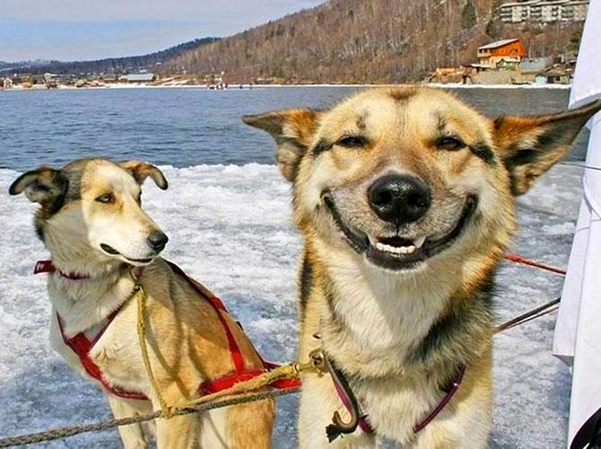 Un sorriso allunga la vita