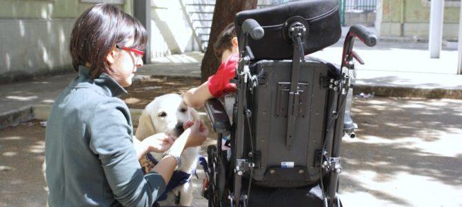 """Pet therapy, un """"lavoro da cani"""""""