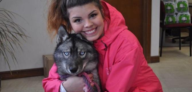 Dalle stelle dei concorsi alla pet therapy raven il siberian husky che aiuta a combattere l - Husky occhi diversi ...