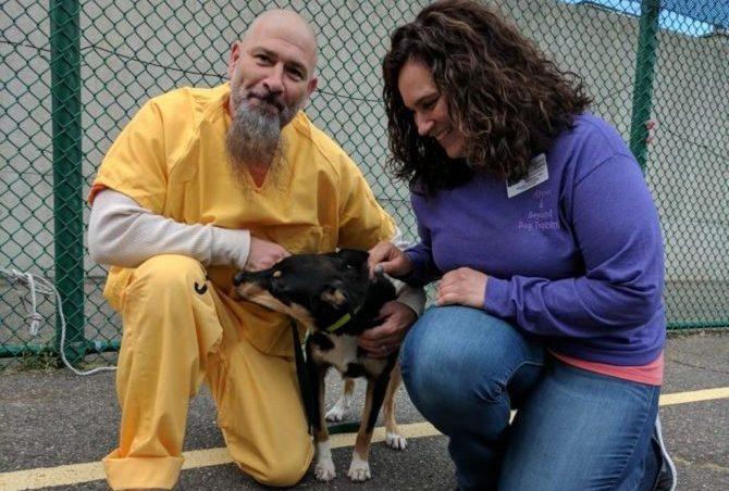 In New Jersey, i detenuti educano i cani alla pet therapy