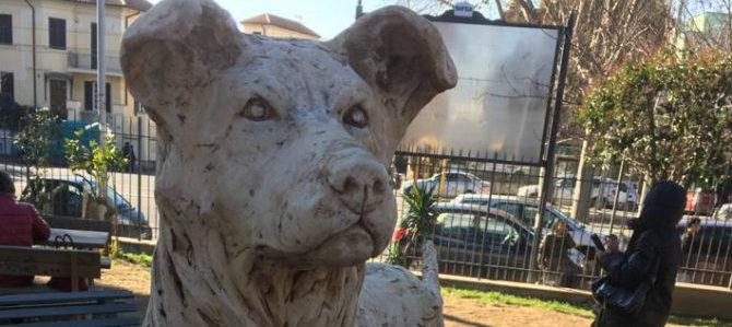 Un trailer per Angelo – Life of a street dog