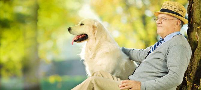 Cani e Anziani, insieme contro la pigrizia