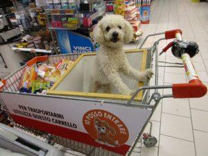 accesso cani al supermercato