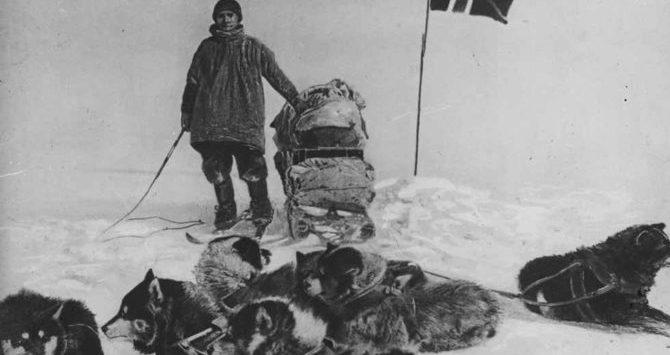 Cani che hanno fatto la storia: la scoperta dell'Antartide