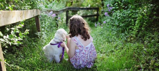 Il cane, non solo pet-terapy: relazione e attività assistite.