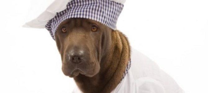 Le dicono che il suo cane è lurido e che non ceneranno nel suo ristorante