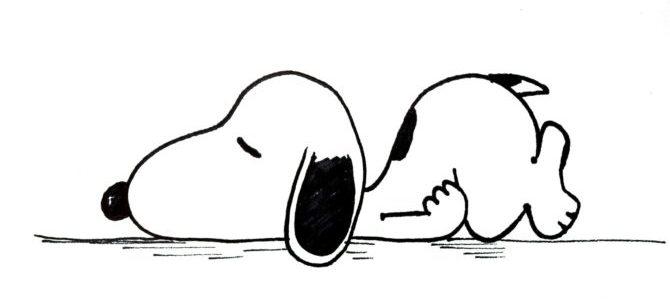 La passione per i cani non ha contagiato solo il cinema, anche il fumetto