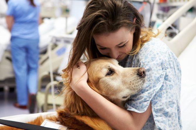 Il Lombardia i cani potranno entrare in ospedale
