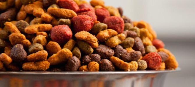 Tabella nutrizionale degli alimenti per cani: come si legge