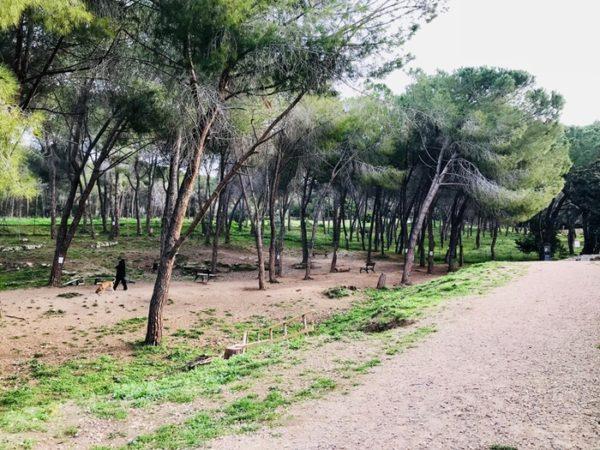 A Sassari area canina oggetto di atti di vandalismo
