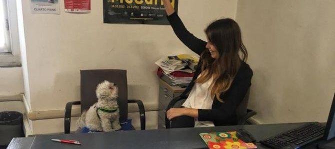 A Genova in Comune si potranno portare i cani in ufficio