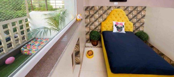 Nasce in India il primo hotel di di lusso per cani