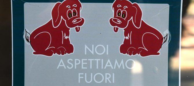 Cani in bar e ristoranti? Replica del Fipe: non decide il sindaco