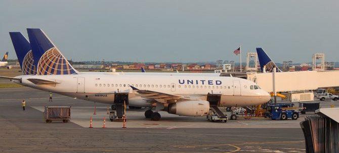 Amici a quattro zampe: tre errori in pochi giorni ad opera della compagnia aerea United