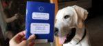 Passaporto del cane: come si ottiene e chi lo rilascia